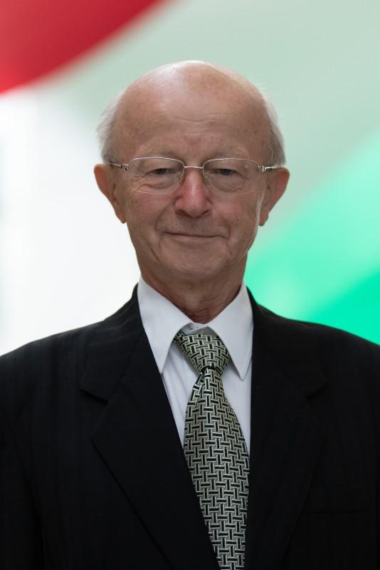 Prof. Dr. Kiss Attila